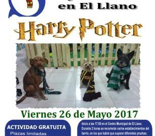 Yincana de Harry Potter